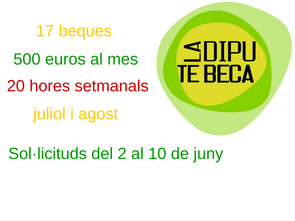 17 beques (1)