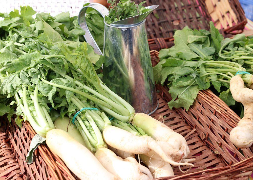 verduras ecologicas betera